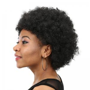 Perruque Synthétique Courte Inclinée Bang Shaggy Afro Curly -