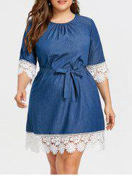 Casual Plus Size Lace Trim Dress -
