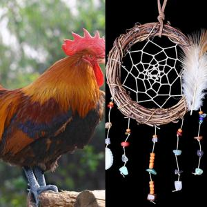 Feather Vine Circle Shell Hanging Handmade Dream Catcher -