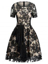 Jacquard Lace Panel Fit and Flare Dress -