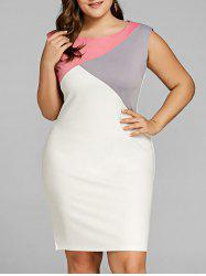 Plus Size Color Block Sleeveless Sheath Dress -