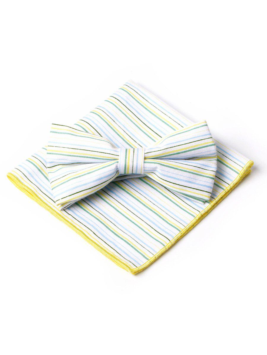 Chic Simple Striped Pattern Bow Tie and Handkerchief