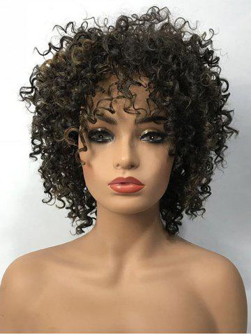 Online Short Side Bang Colormix Fluffy Curly Synthetic Wig