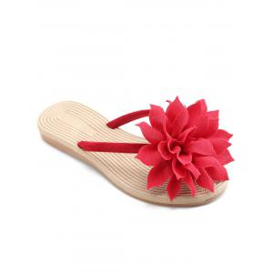 Casual Flower Flip Flops for Beach -