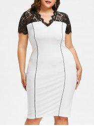 Plus Size Work Sheath Dress with Lace Detail -