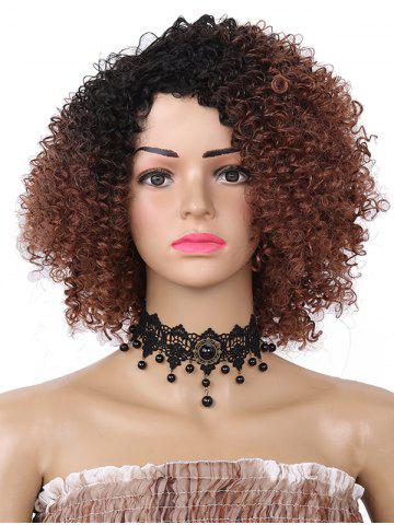Affordable Short Side Bang Fluffy Colormix Curly Synthetic Wig