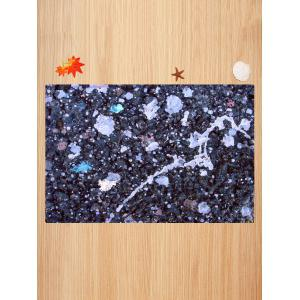 Mud Pattern Anti-skid Water Absorption Area Rug -