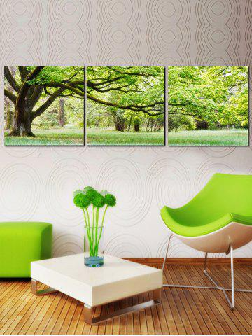 Store Green Tree Canvas Prints Wall Art Painting 3Pcs