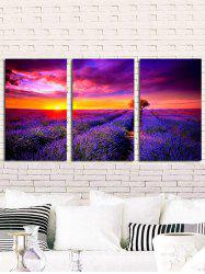 Sunlight Lavender Field Printed Unframed Canvas Paintings -