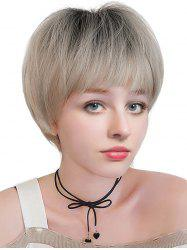 Short Full Bang Colormix Straight Synthetic Wig -