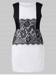 Plus Size Work Dress with Lace Panel -