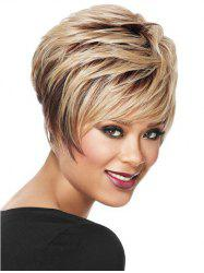Short Side Bang Layered Straight Colormix Synthetic Wig -