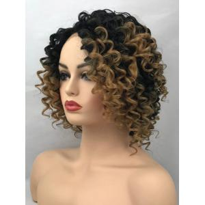 Short Side Bang Colormix Curly Synthetic Lace Front Wig -