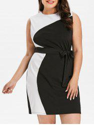 Sleeveless Plus Size Color Block Mini Dress -