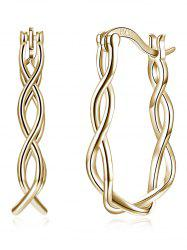 Twisted Rope Decorative Hinged Back Earrings -
