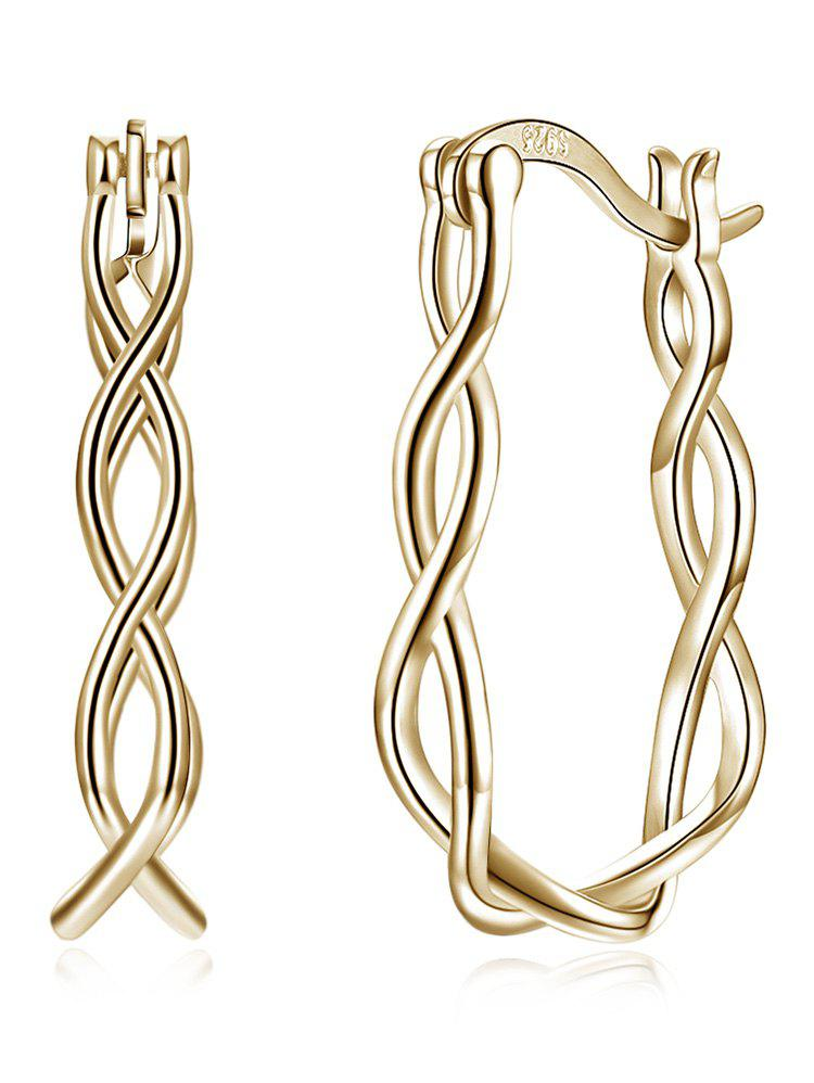 Outfits Twisted Rope Decorative Hinged Back Earrings