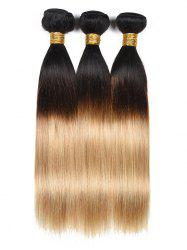 Ombre Human Hair Straight Hair Weaves -
