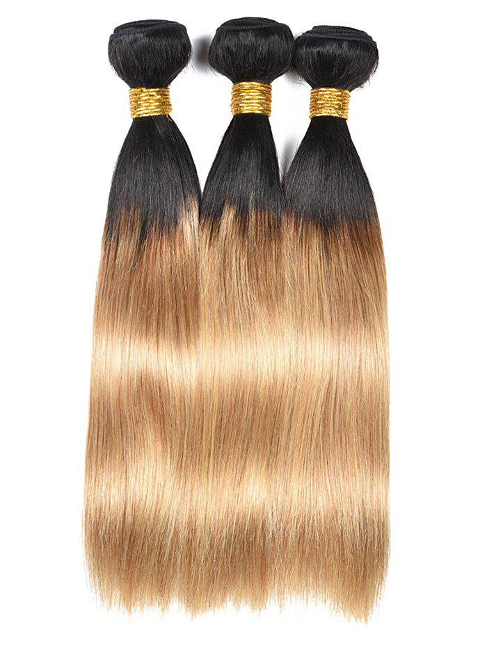Chic Indian Virgin Ombre Straight Human Hair Wefts