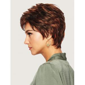 Short Full Bang Straight Colormix Synthetic Wig -