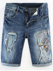 Distressed Destructed Embroidery Straight Denim Shorts -