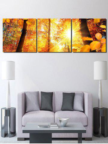 Hot Autumn Sunshine Forest Printed Wall Art Canvas Paintings