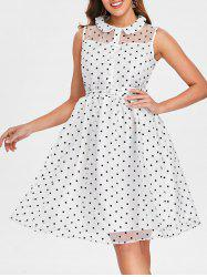 Dotted Sheer Mesh Fit and Flare Dress -