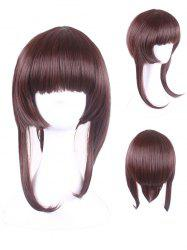 Short Neat Bang Straight Game Characters Cosplay Synthetic Wig -