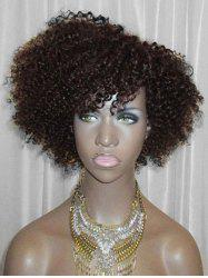 Side Bang Short Fluffy Curly Lace Front Synthetic Wig -
