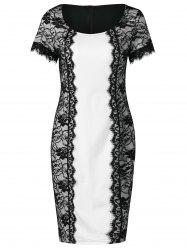 Lace Panel Bodycon Office Dress -