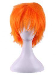 Short Straight Anime Cosplay Synthetic Wig -