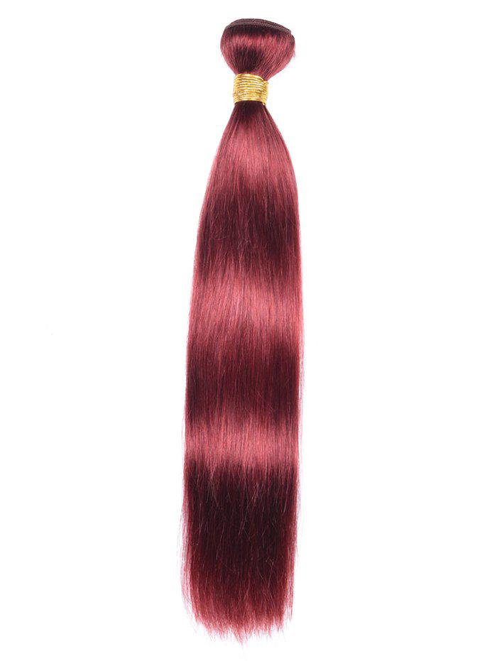 Chic Human Hair Straight Hair Weft