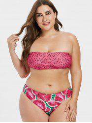 Plus Size High Cut Watermelon Bikini Set -