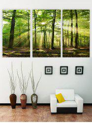 Unframed Sunshine Forest Printed Canvas Paintings -
