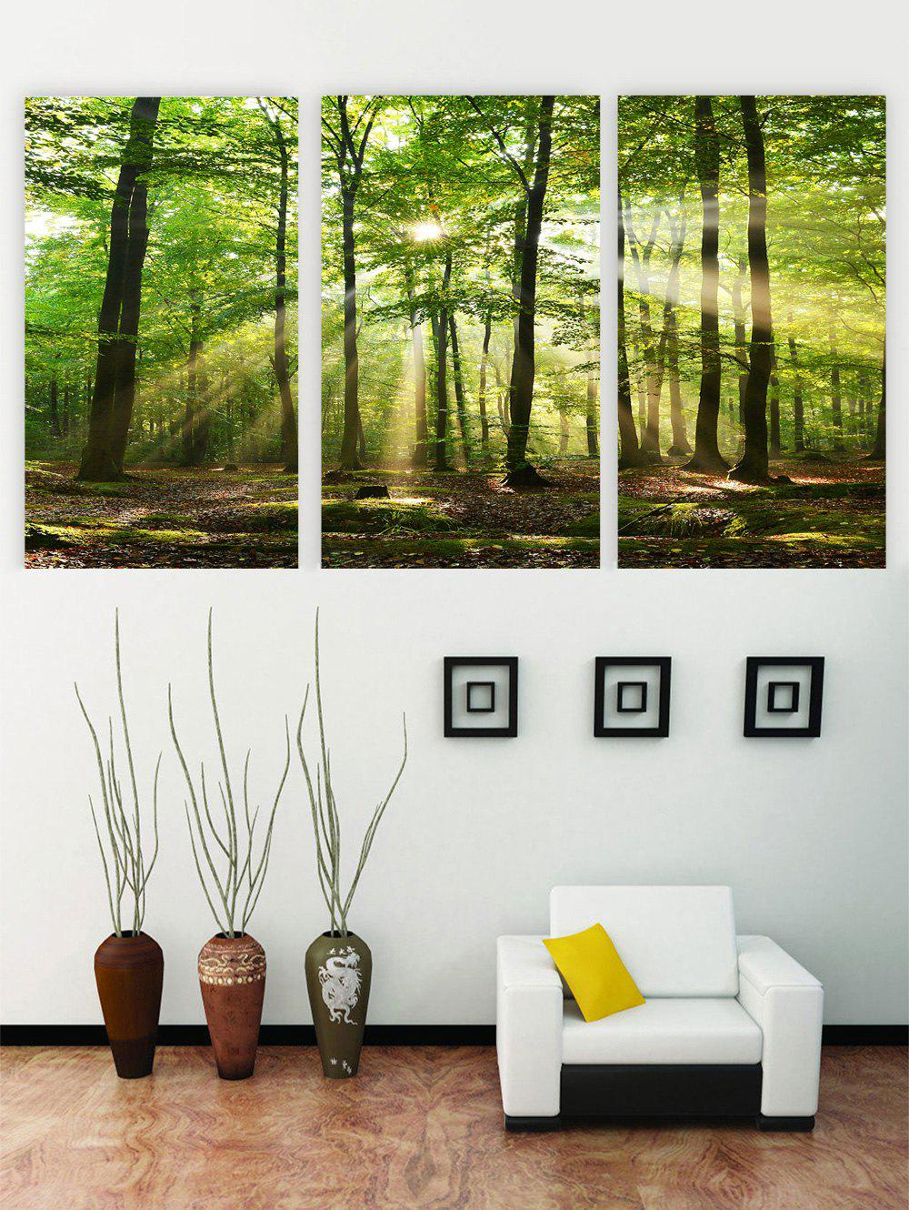 Sale Unframed Sunshine Forest Printed Canvas Paintings