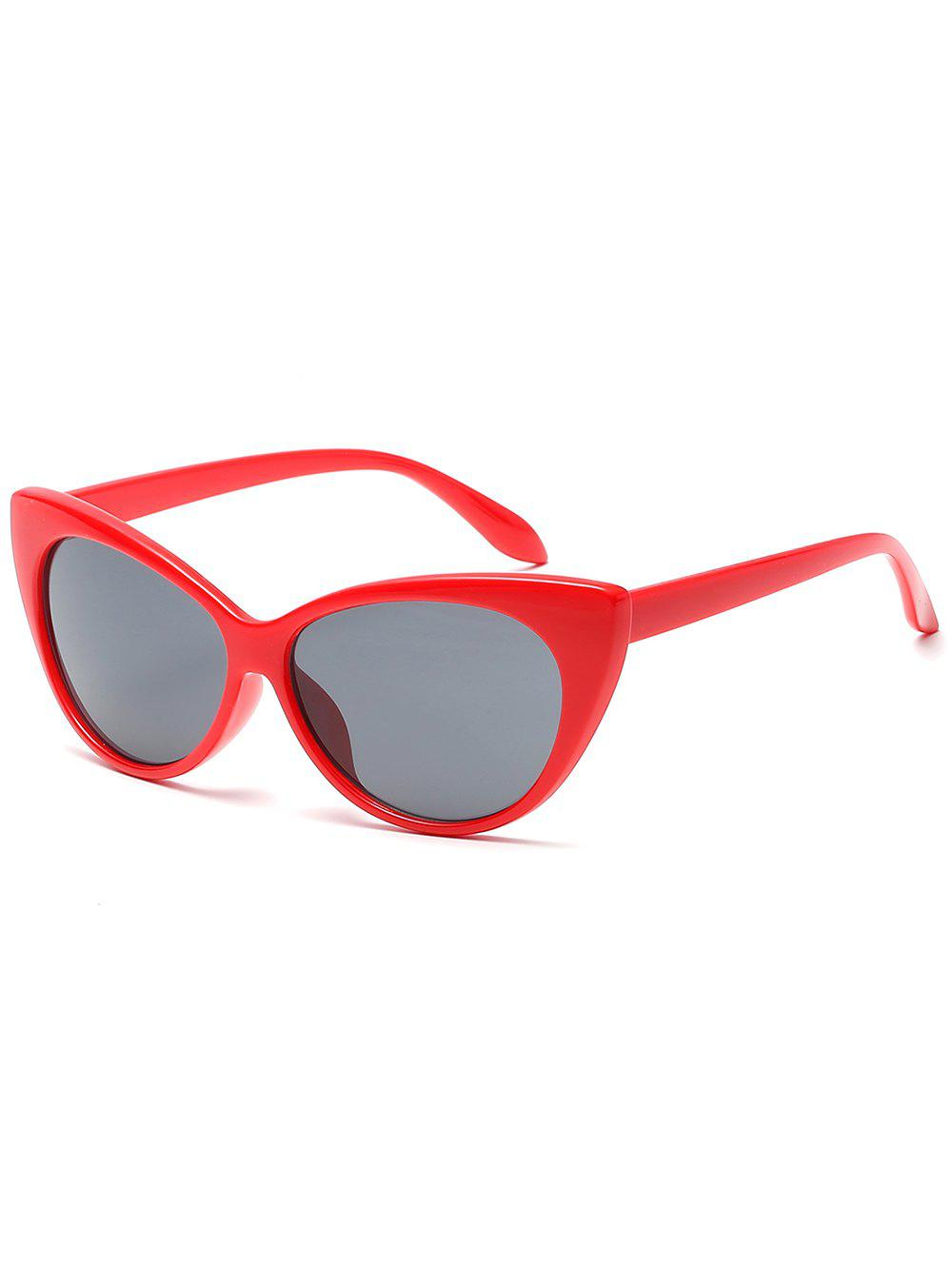 Outfits Lightweight Flat Lens Full Frame Catty Sunglasses