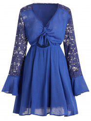 Plus Size Sheer Cut Out Lace Sleeve Dress -