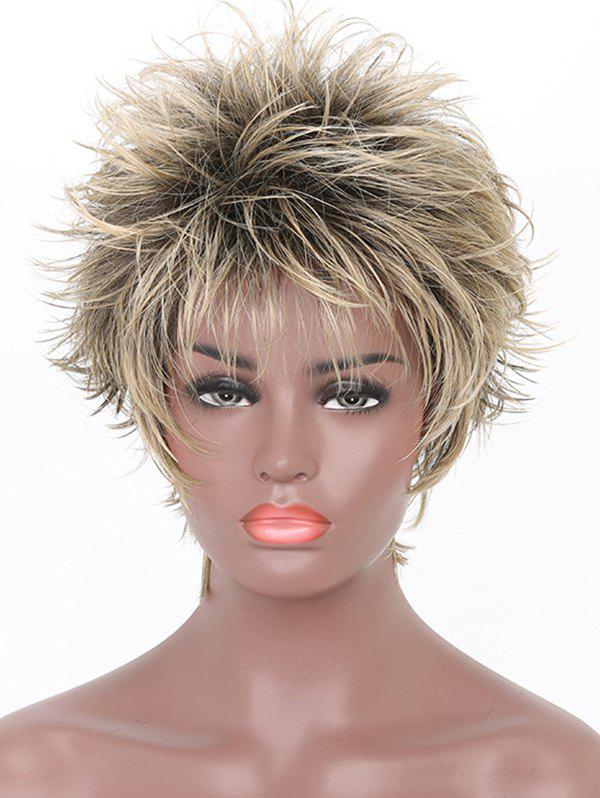Discount Inclined Bang Short Colormix Straight Synthetic Wig