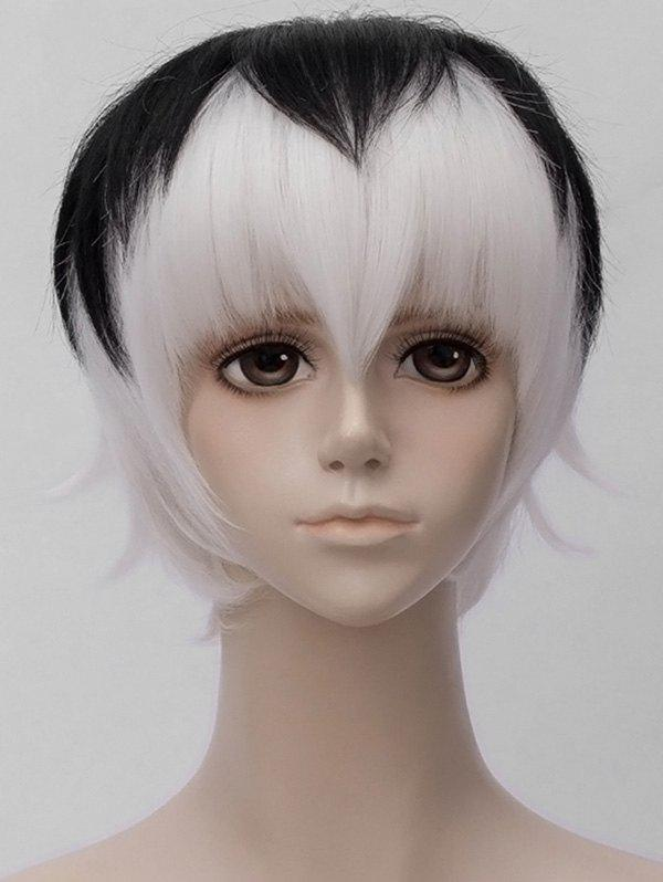 Fancy Inclined Bang Short Two Tone Straight Anime Cosplay Synthetic Wig