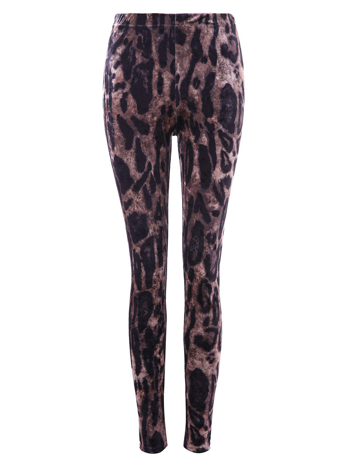 Online Leopard Print Velvet Pencil Pants