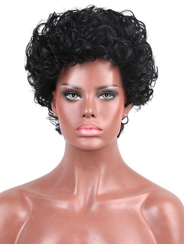 Chic Short Capless Fluffy Curly Human Hair Wig