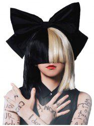 Short Full Bang Two Tone Blunt Straight Cosplay Synthetic Wig -