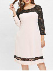 Plus Size Lace Panel Dress with Pocket -