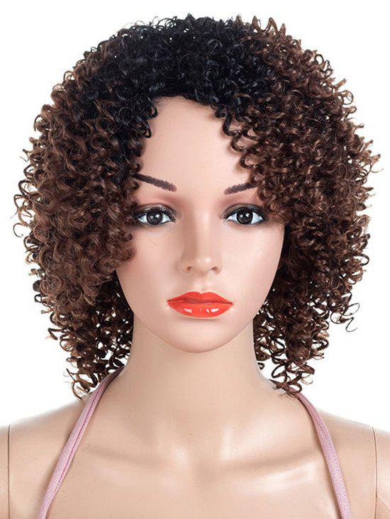 Outfit Inclined Bang Colormix Short Kinky Curly Synthetic Wig