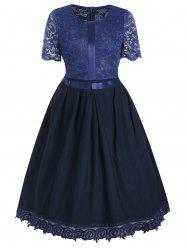 Retro Lace Insert Fit and Flare Dress -