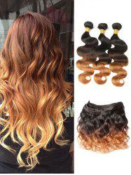 Real Human Hair Ombre Body Wave Malaysian Hair Weaves -