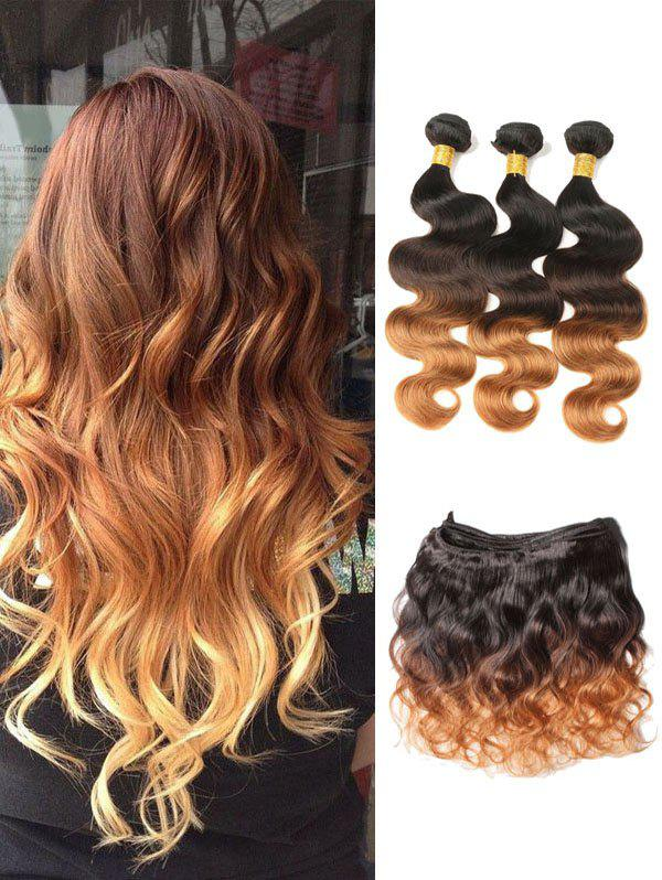 Best Real Human Hair Ombre Body Wave Malaysian Virgin Hair Weaves
