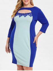 Plus Size Cut Out TwoTone Sheath Dress -