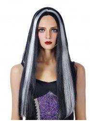 Middle Part Long Capless Straight Synthetic Wig -