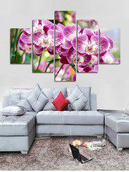 Moth Orchid Flower Print Unframed Canvas Paintings -
