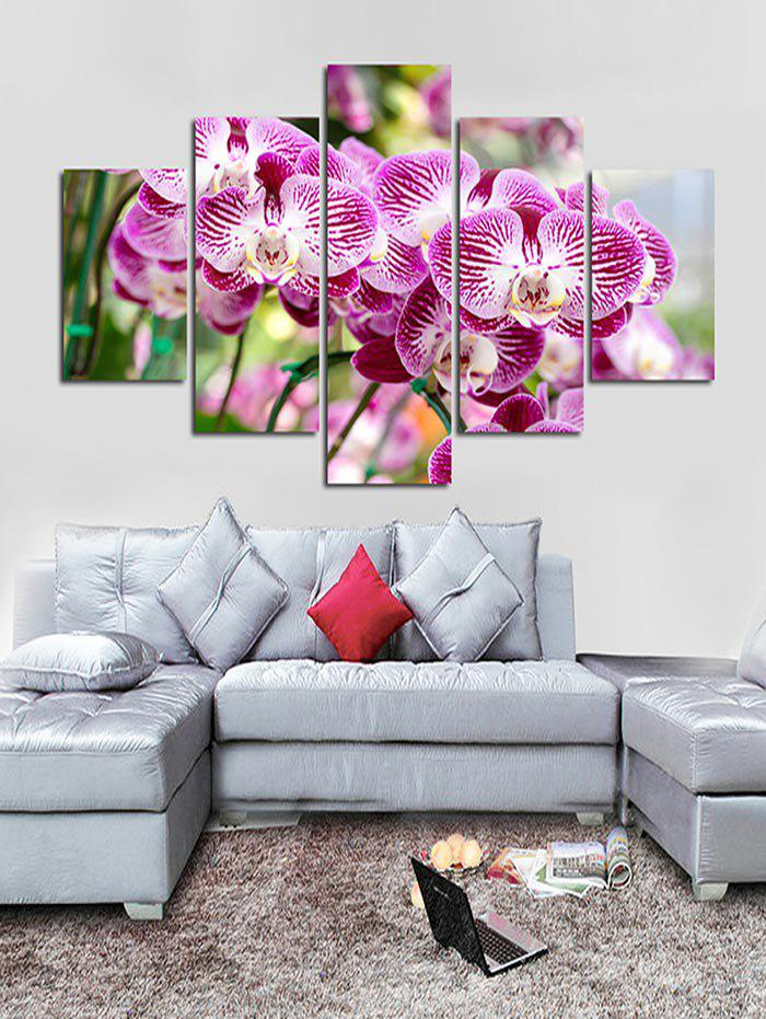 Trendy Moth Orchid Flower Print Unframed Canvas Paintings